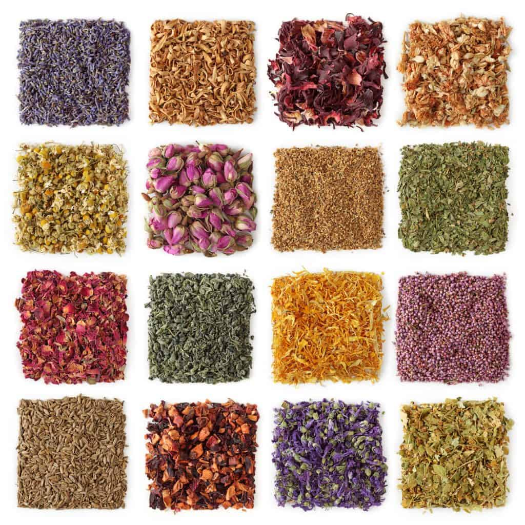 Sixteen Different Dried Botanicals